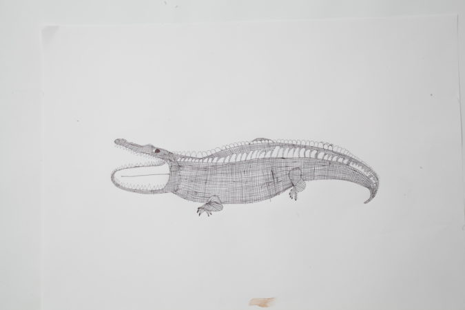 Andrew Johnstone, 'Crocodile', 2020. Biro on cartridge paper. Image by Martin Livesey.