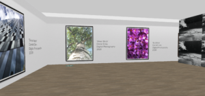 A view of the interior of a virtual art gallery with large scale photography on the walls